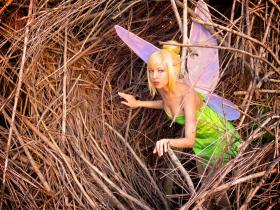 Tinkerbell from Peter Pan worn by Momo Kurumi